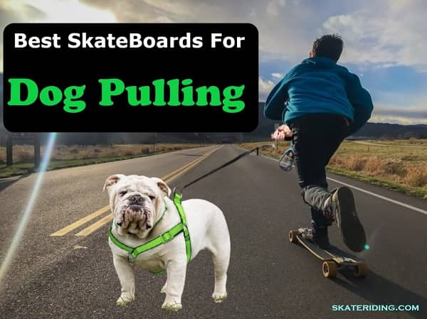 best skateboard for dog pulling